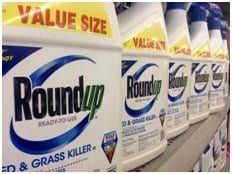 Roundup, the weed killer used all over the United States by both commercial farmers and individuals for home gardening, is at the center of a class-action lawsuit in which its producer, Monsanto, is being sued.
