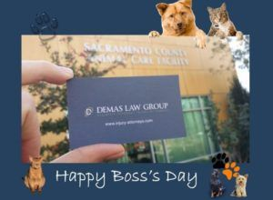 Demas Law Group Boss Day