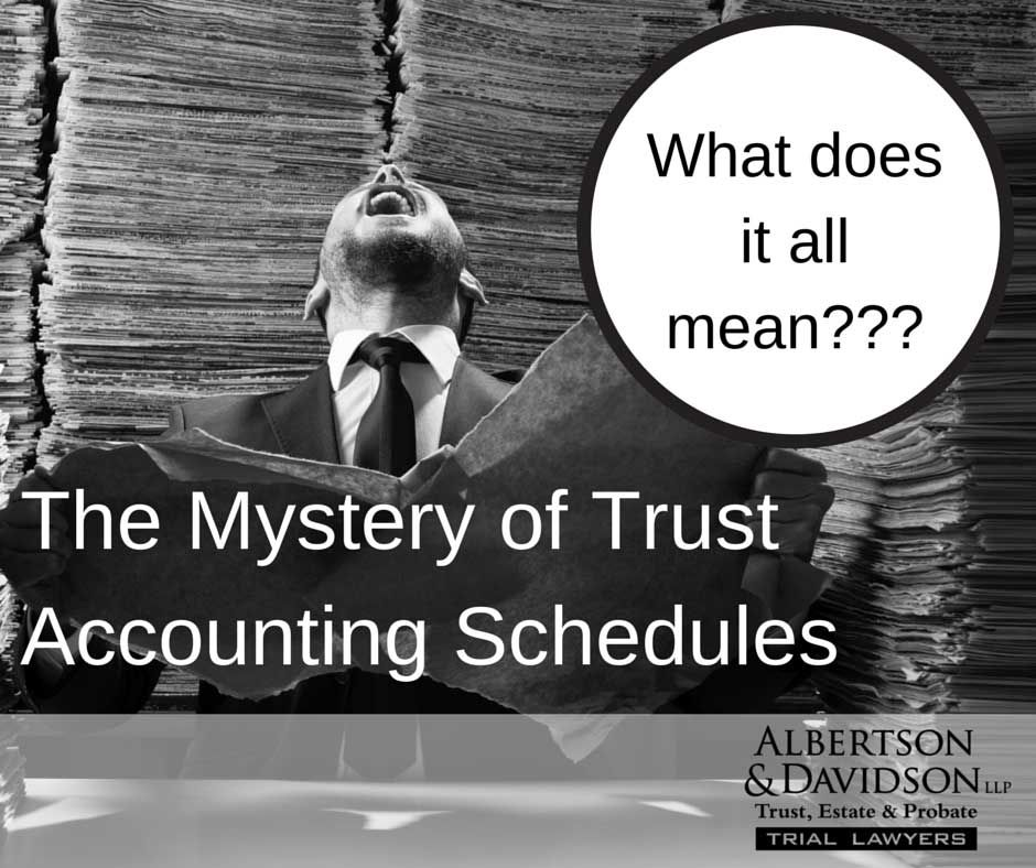man finding the meaning of San Diego Trust Accounting Schedules