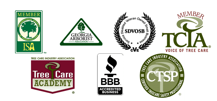 LTRC Tree Specialists accreditation