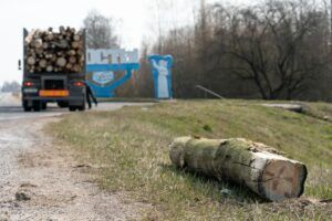 Logging accident on road