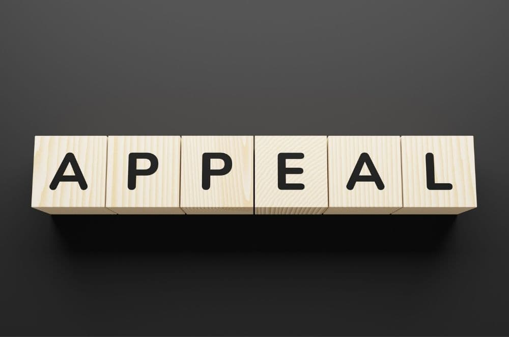 what happens during an appeal?