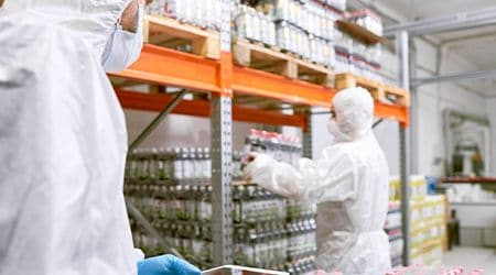 food processing plant employees working