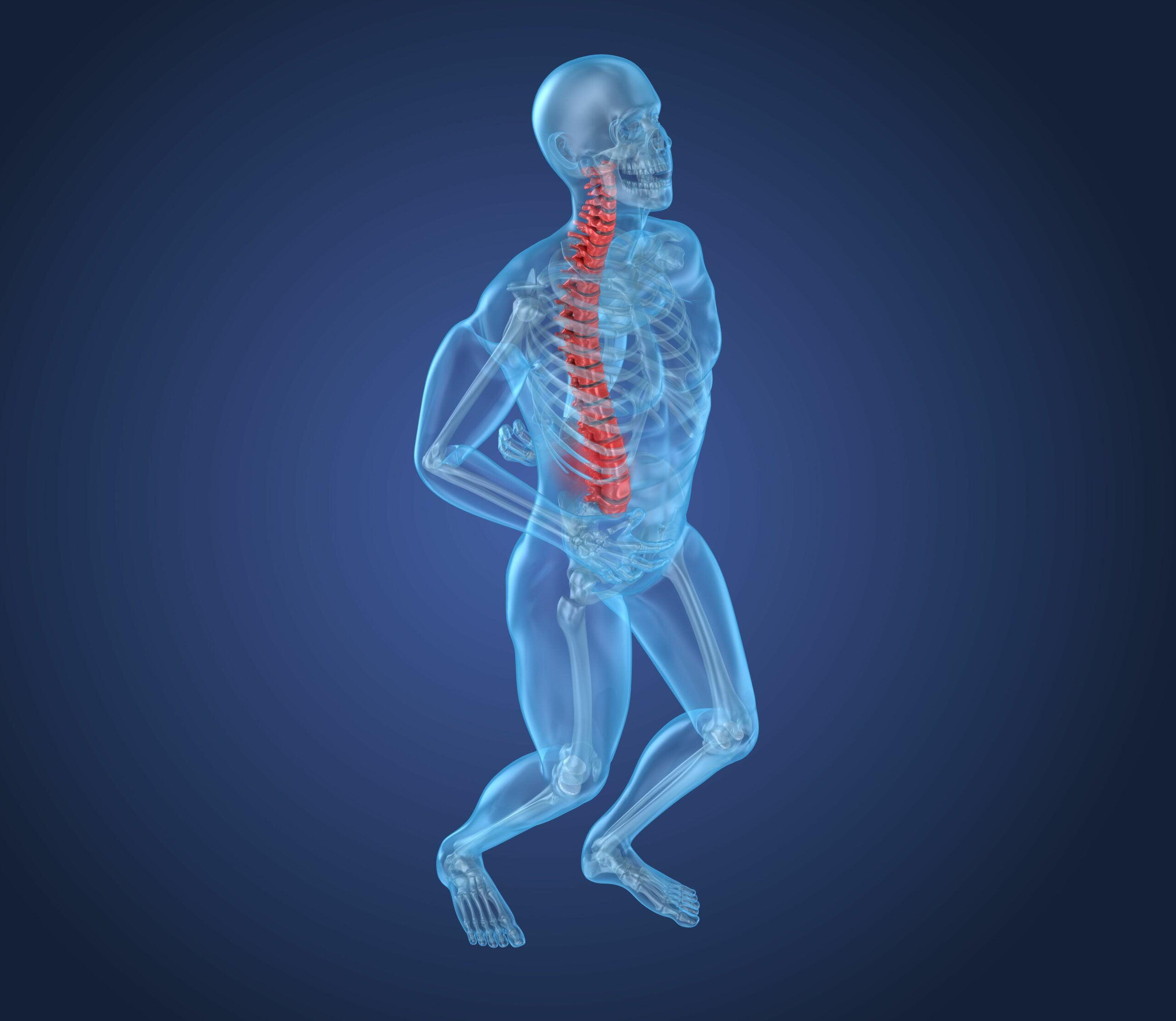 human anatomy x-ray for spinal cord injury