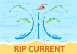 rip current diagram showing how to escape rip current