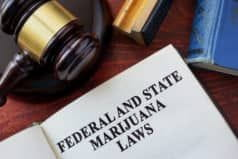 Federal and NJ state marijuana laws