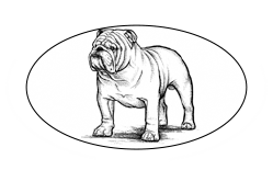 Employment and Consumer Law
