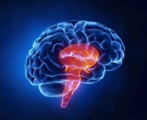 Did you suffer from a brain stem injury?