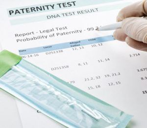 paternity test