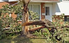 Storm Safety – Post Storm Checklist