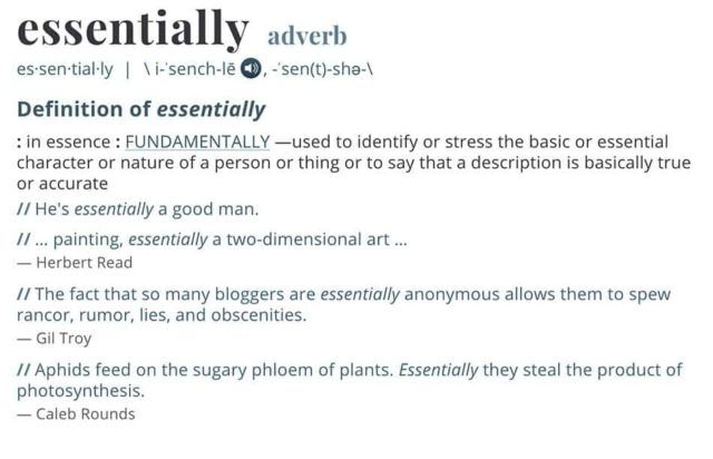 Definition of Essentially