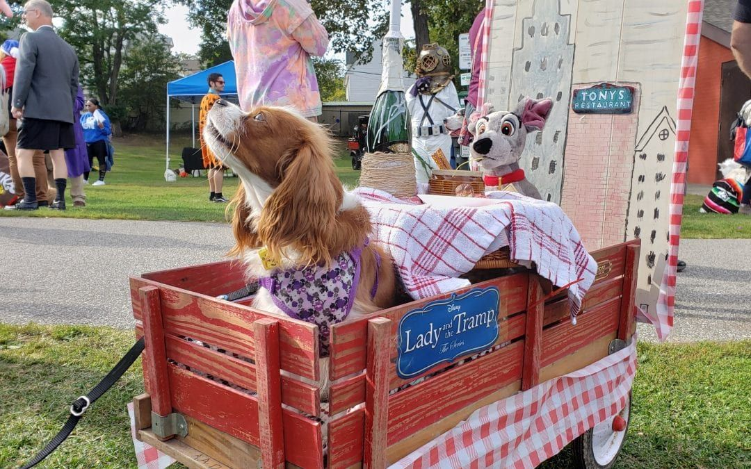 Plethora of Pooches, Perfect Weather Highlight 12th Annual Spooky Pooch Parade