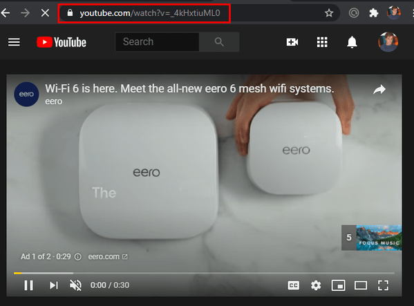 Locating the YouTube URL to download the video