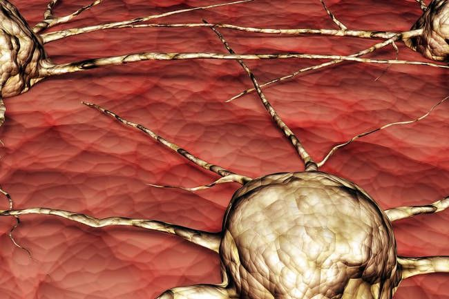2014-02-12-historical-facts-behind-cancer-fighting-drugs-will-shock-you-1