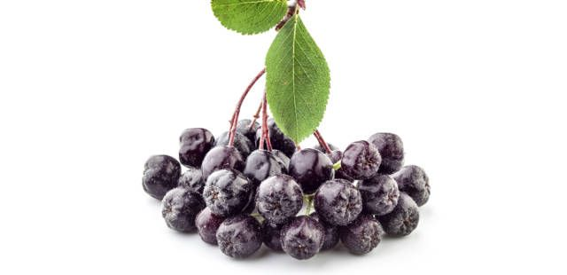 2014-04-10-6-uncommon-superfoods-that-could-help-your-health-status-soar-aroniaberries