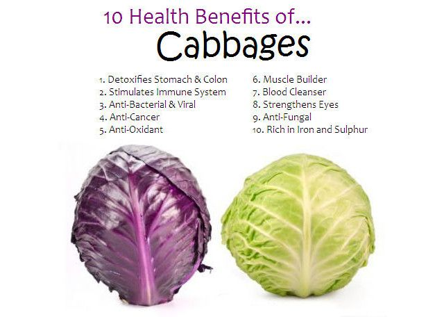 cabbage health benefits infographic