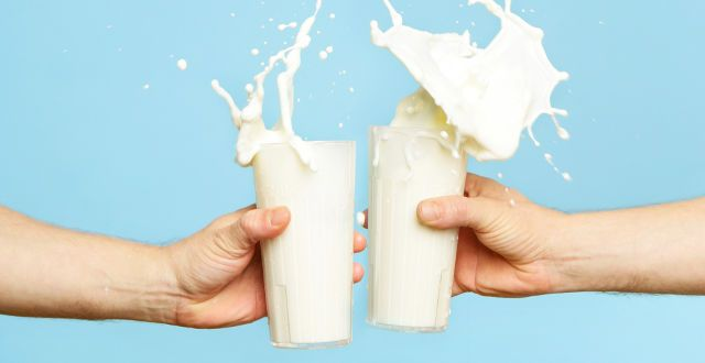 milk is bad for you