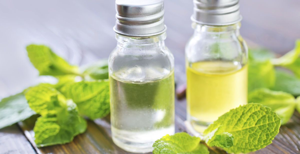 peppermint oil boosts digestive health