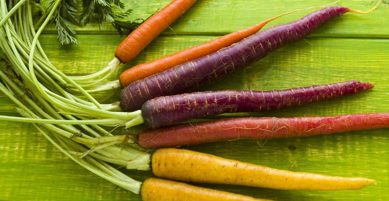 carrots root vegetable