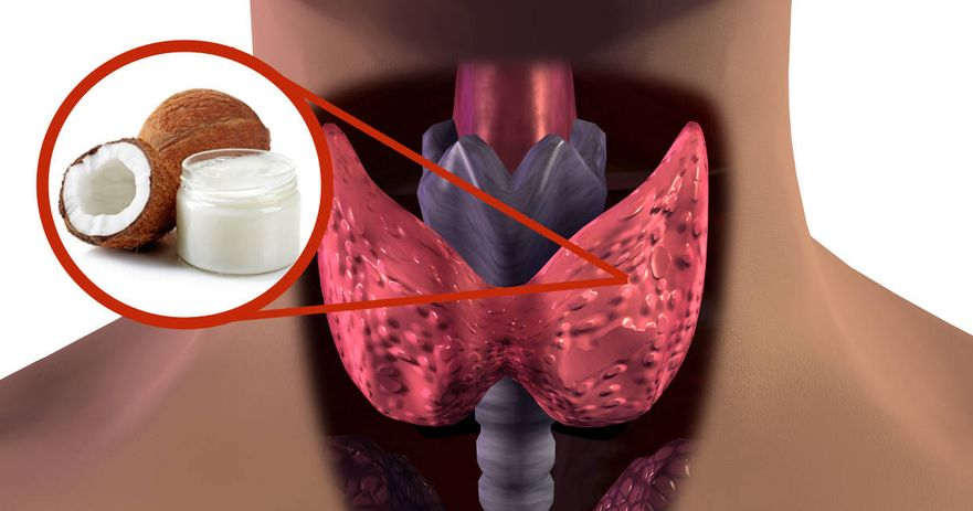 coconut oil supports thyroid health