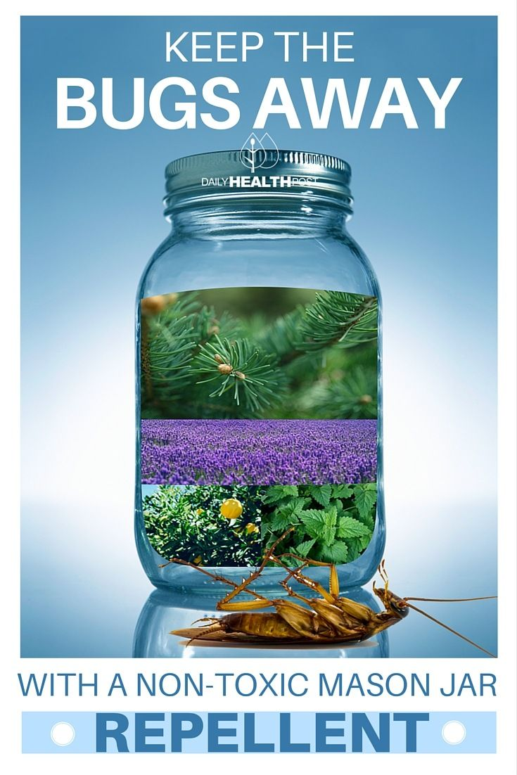 Keep Bugs Away With a Non-Toxic Mason Jar Mosquito Repellent