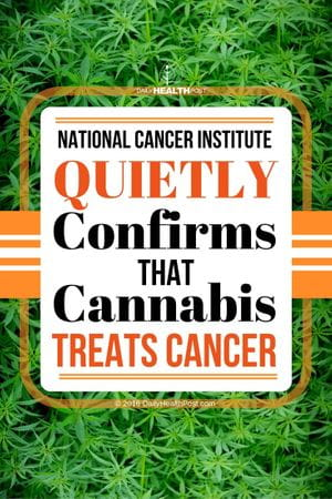 National Cancer Institute Quietly Confirms That Cannabis Treats Cancer