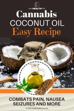 Cannabis-Coconut-Oil-Easy-Recipe-Combats-Pain-Nausea-Seizures-and-More
