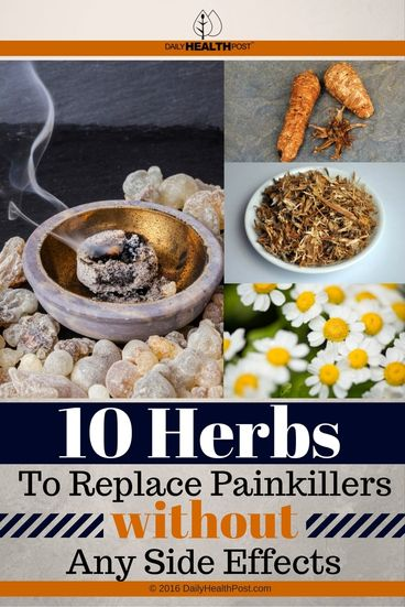 10-herbs-to-replace-painkillers-without-any-side-effects