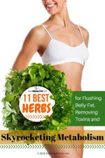 11-Best-Herbs-for-Flushing-Belly-Fat-Removing-Toxins