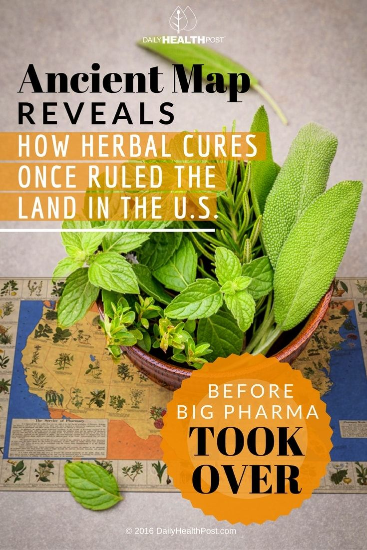 ancient-map-reveals-how-herbal-cures-once-ruled-the-land-in-the-us