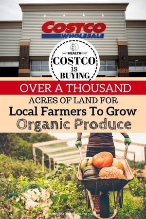 costco-is-buying-over-a-thousand-acres-of-land-for-local-farmers
