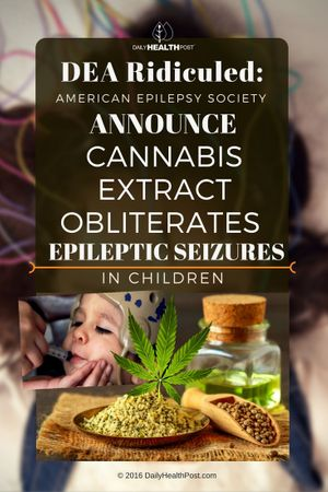 dea-ridiculed-american-epilepsy-society-announce-cannabis-extract-obliterates-epileptic-seizures