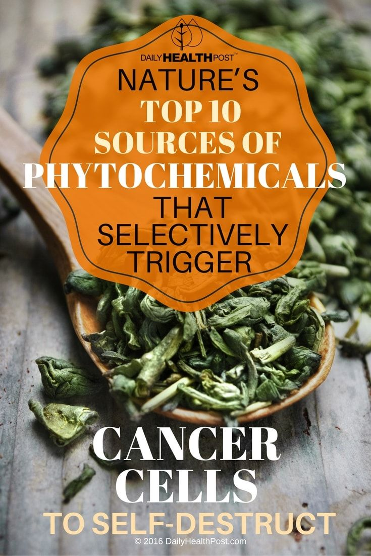 natures-top-10-sources-of-phytochemicals-that-selectively-trigger-cancer-cells