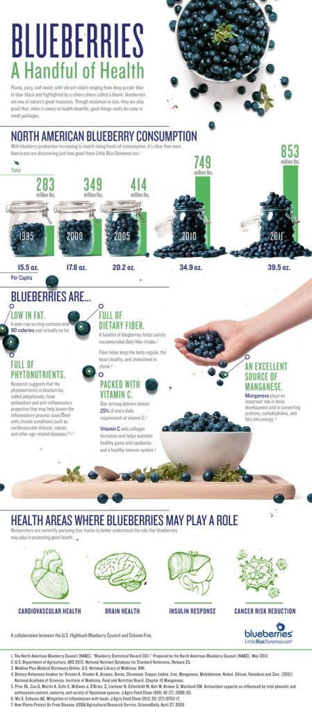 blueberry-infographic