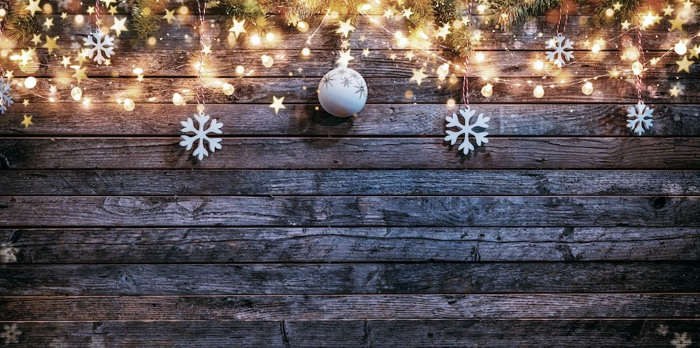 Plants help prepare indoor air quality for the holiday season