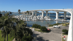 overlooking the bay in Clearwater