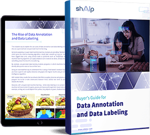 Data Annotation Buyer's Guide