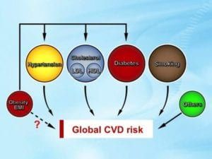 Graph on global CVD risk factors in red, yellow, green, blue, brown circles on blue background
