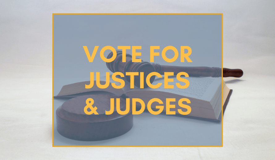 Michigan Judicial Elections 2020: What Judges Should You Vote For?