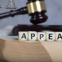 Gavel banging on cubes forming the word Appeal
