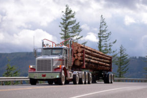 Logging Truck Accidents