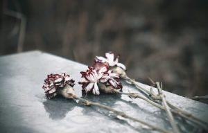 What Is Wrongful Death? DolmanLaw
