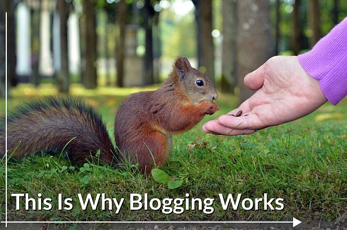 Why Does Real Estate Blogging Work?