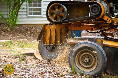 All In Tree Service 5216 Cross Ridge Circle Woodstock, GA 30188 - +17706374676 - https://allintreeservices.com Tree Service, tree removal, tree trimming, land clearing, stump grinding, emergency tree service, arborist